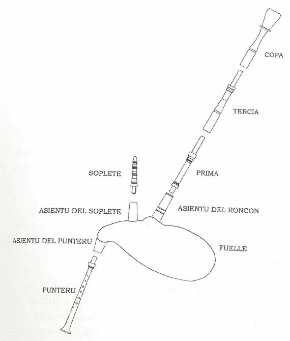 gaita-asturiana-morfologia